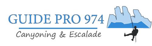 Guide Pro 974